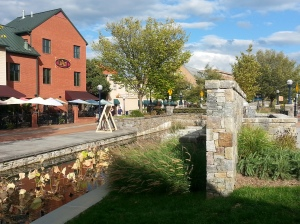 Carroll Creek 3